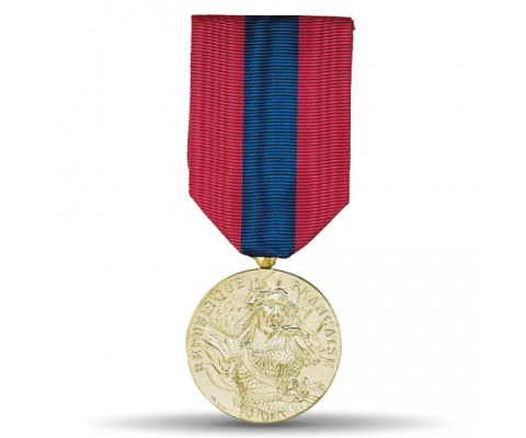 DEFENSE NATIONALE BRONZE